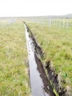 CNR invita a postular  a proyectos de riego